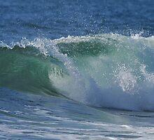 Summer Surf II by Barbara Burkhardt