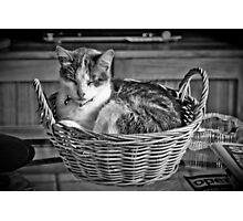 Basket Case Photographic Print