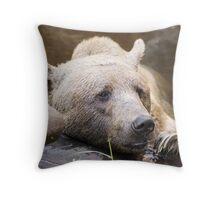 Brown Bear- Adelaide Zoo Throw Pillow