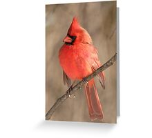 Big Red 02 Greeting Card