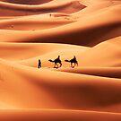 Sand Dunes 1 by john0
