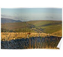 Looking Towards Hebden Moor Poster
