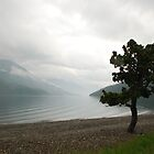 Waterton Lake from Waterton Town Canada by Margaret Brown