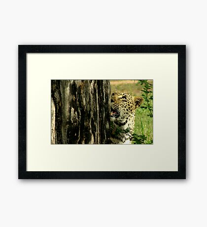 scent and sight - Karula Framed Print
