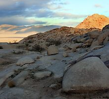 Early Morning In Johnson Valley by CarolM