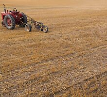 Resting Tractor - British Columbia rural life. by lgraham