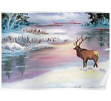 Moose by the water in the Mountains Poster
