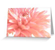 Keep it Pink © Greeting Card