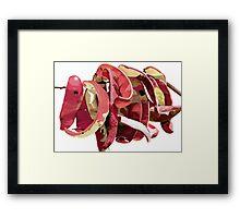 Garrofes Vermelles Framed Print