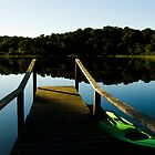 Dock at Ryder Pond on Cape Cod by pdgoodman