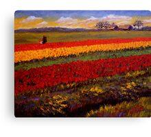 Evening Tulip Picking Canvas Print