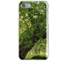One Tree, St James Park, London iPhone Case/Skin