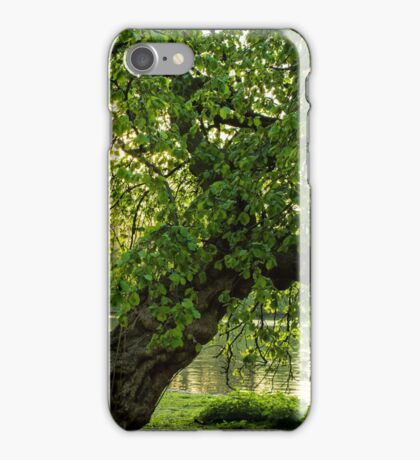 One Tree, St James Park, London iPhone Case/Skin