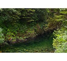 Emerald Pool Photographic Print