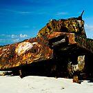 Deserted Tank in Culebra, Puerto Rico by pdgoodman
