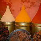 Spices shop in the medina of Marrakesh, Morocco by Bruno Beach