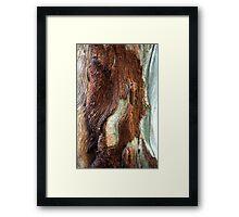 Brunette Beauty Framed Print