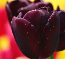 Tulips! Sticker