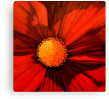 Red Cosmos Center Canvas Print