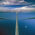 A View from the South Tower of the Mackinac Bridge by Robert deJonge