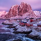 The Glow of an Arctic Dawn at Noon by Kristin Repsher