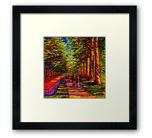 Shady Path in Keukenhof Framed Print