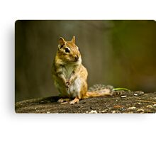 Please Sir can I have some more? Canvas Print