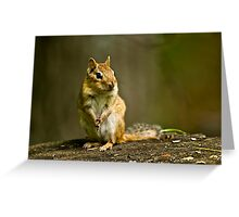 Please Sir can I have some more? Greeting Card