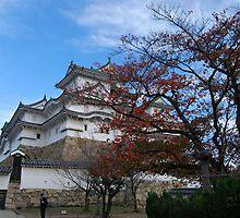Himeji Imperial Palace, Japan by chobephotos