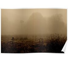 A foggy morning in the country Poster