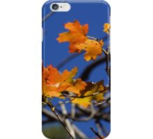 Farewell Autumn 2014 iPhone Case/Skin