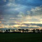 Sunrise on the prairie by Lynne Prestebak