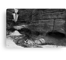 Ice In The Canyon Canvas Print