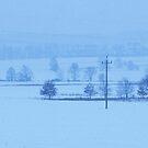 Winter Landscape by Kasia Nowak
