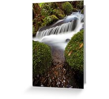Cement Creek Greeting Card