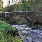 Packhorse Bridge - West Burton by Trevor Kersley