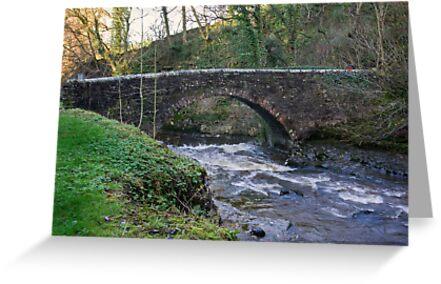 Packhorse Bridge - West Burton by Trevor Kersley