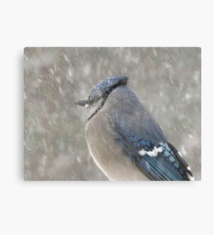 Oooohhhh.... what is this STUFF?!   Canvas Print