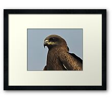 King of sky Framed Print