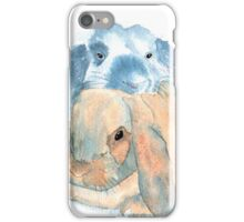 Two Rabbits iPhone Case/Skin