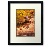 Dawn Mannington Meadows, It's Going to be a Great Day Framed Print