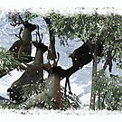 CGI Reindeer In The Woods Christmas Holiday Card by Moonlake