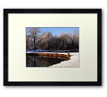 Winter at the Pond II Framed Print