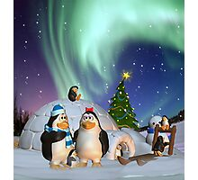 Penguine Family In The Snow Winter Card/Poster Photographic Print