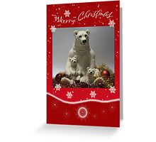 Holiday Card With Polar Bear And Baby Red Greeting Card