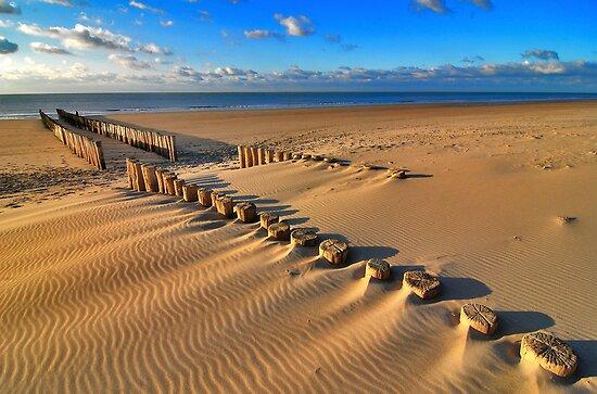 Golden RedBubble Beach..... by Adri  Padmos