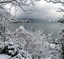 Town Walchensee - Winter Scene by Daidalos