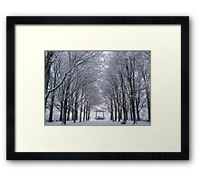 Winter Band Stand Framed Print