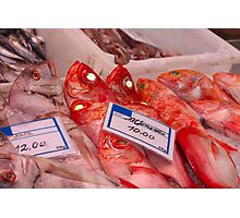 Fresh fish on a fish market in Spain Photographic Print
