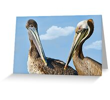 Two Pelicans Discussing Life Greeting Card